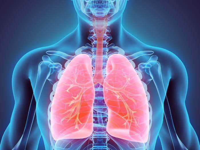Cómo Aumentar La Capacidad Pulmonar Sin Hacer Ejercicio Físico Consejos Trucos Y Remedios
