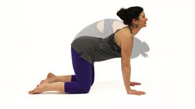 6 estiramientos de yoga para combatir la resaca  consejos