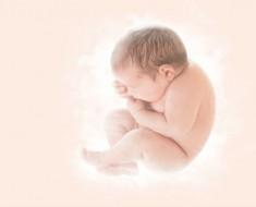 9-meses-embarazo-
