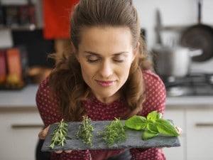 mejores hierbas y especies para perder peso