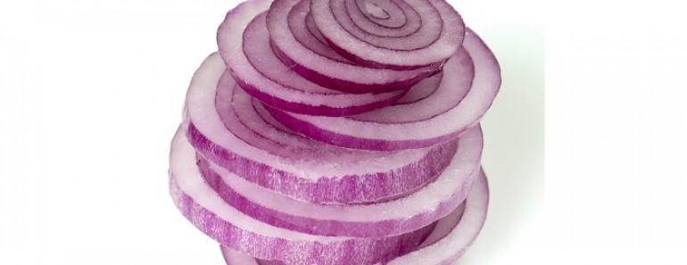 rodajas de cebolla morada