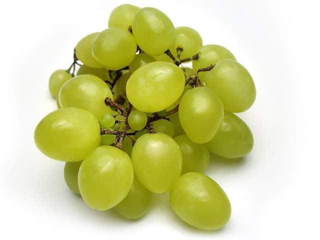 semillas-uva-cancer-colorrectal