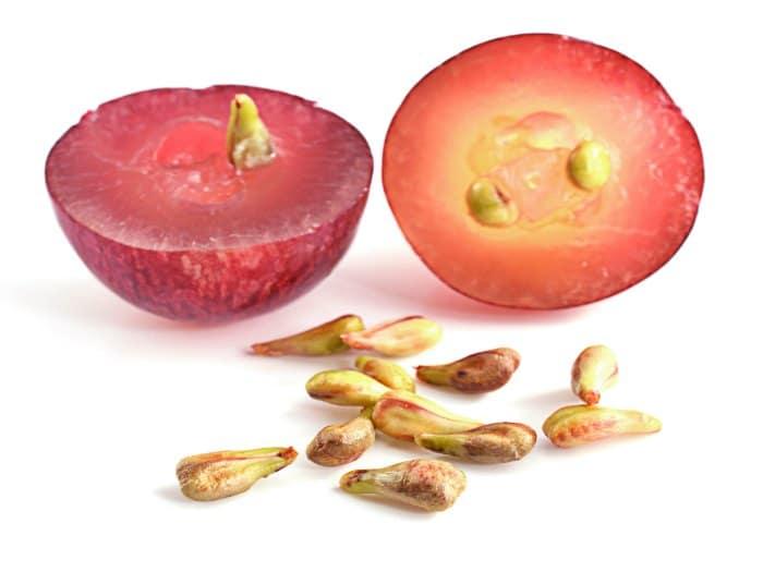 Extracto semillas de uva como tratamiento cancer