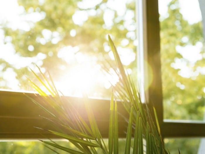 Decoración de primavera, mantener ventanas limpias