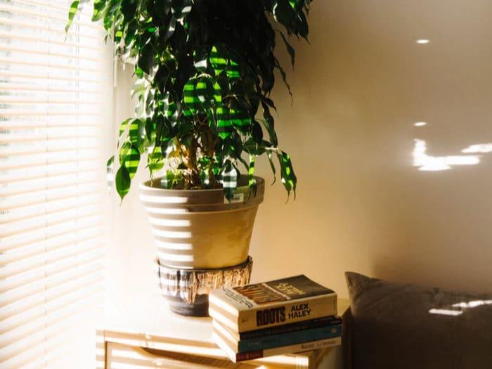 Cómo mantener la casa fresca cuando hace calor