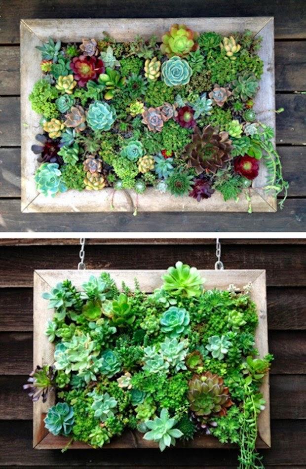 estructura vertical de madera con espacios para colocar plantas una encima de la otra marcos de madera colgantes con tierra para plantar plantas pequeas
