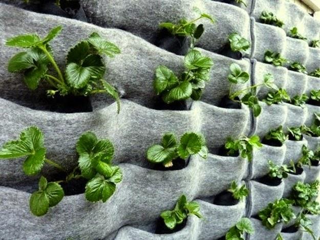 20 ideas sorprendentes para hacer jardines verticales en for Como construir un jardin vertical paso a paso
