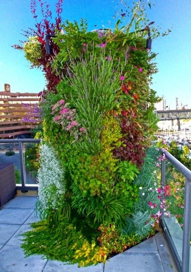 20 ideas sorprendentes para hacer jardines verticales en