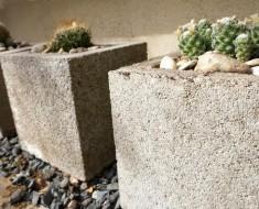 Cacti-in-cinder-block-planters1