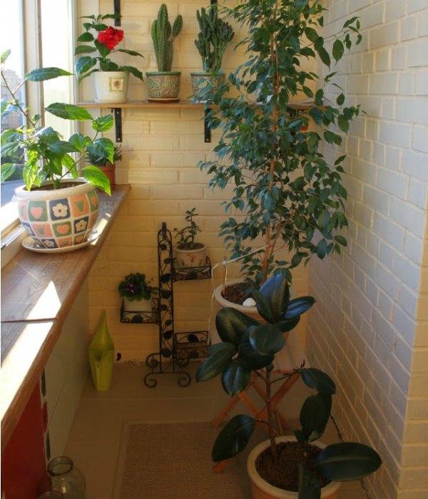 21 ideas creativas para decorar peque as terrazas - Fuente decoracion interior ...