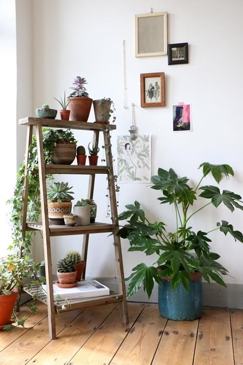 Ideas para decorar con plantas: escalera para poner macetas