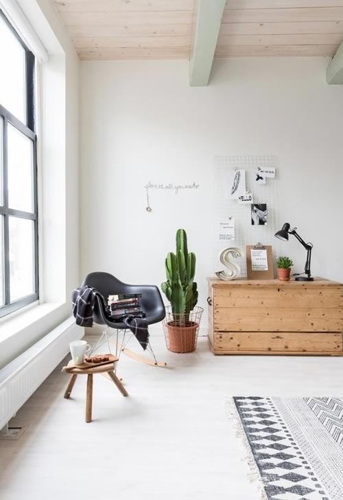 Ideas para decorar con plantas: un cactus grande para el salón