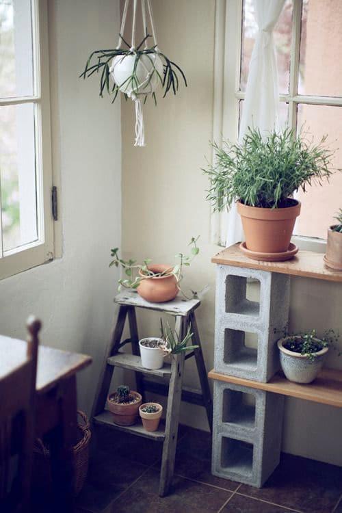 Idea para decorar con macetas y plantas
