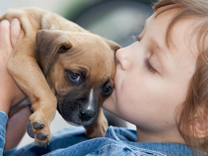 Las mascotas fortalecen nuestro sistema inmunológico