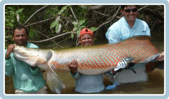 Atractivos turisticos de Iquitos Peru - Loreto Amazonas 85