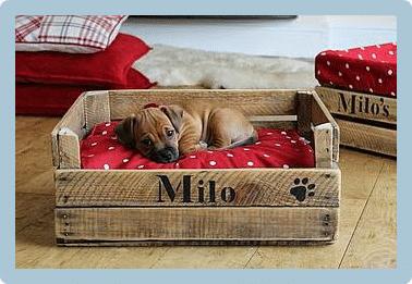Hacer una cama reciclada para mascotas f cil todo mascotas for Zapateras de madera sencillas