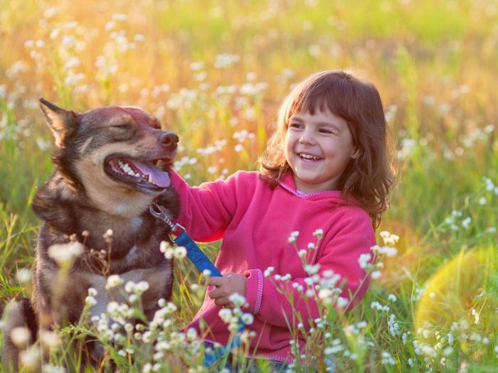 Beneficio de que un niño tenga perro