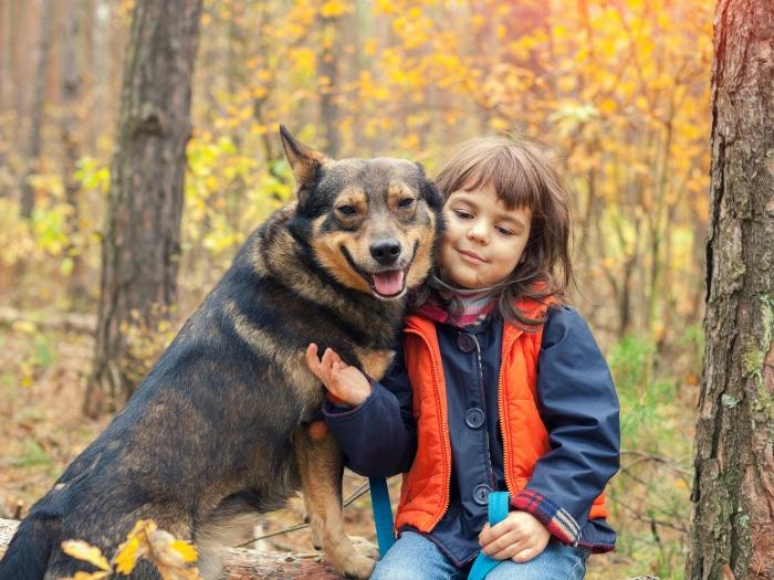 Beneficios perros y niños