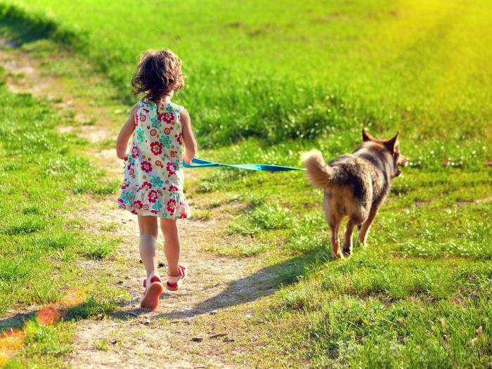 Beneficios tener perro niños
