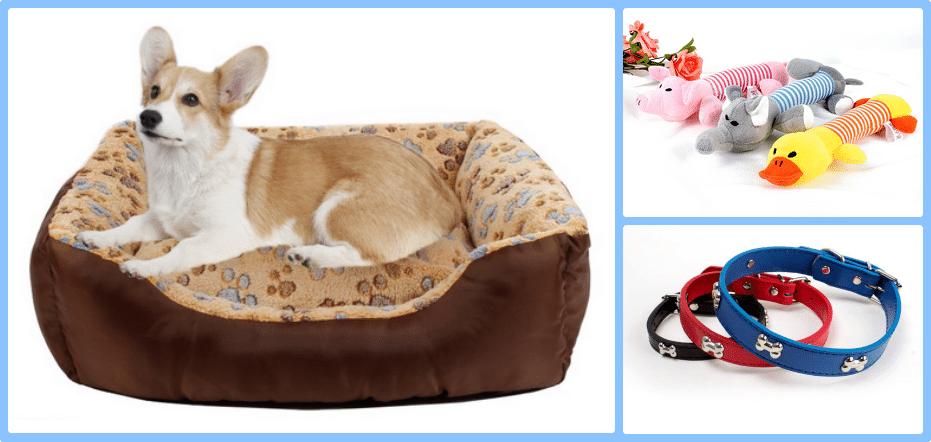 Sorteo Todo Mascotas Participa Y Gana Productos Para Tu