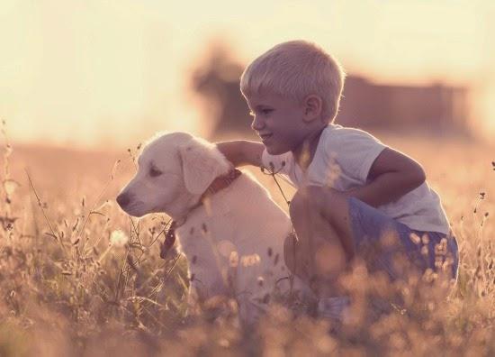 Mascotas para ni os cu les son las mejores para ellos - Perros para tener en casa ...