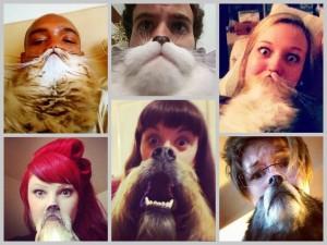 Las Barbas de Gatos y Perros más Graciosas!