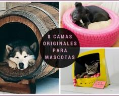8-camas-originales-mascotas