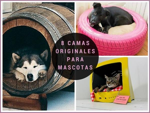 8 buenas ideas de camas originales para mascotas todo - Como hacer camitas para perros ...