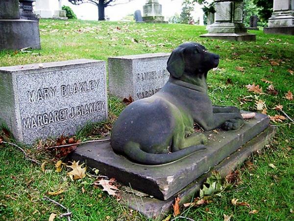 Cementerios de animales