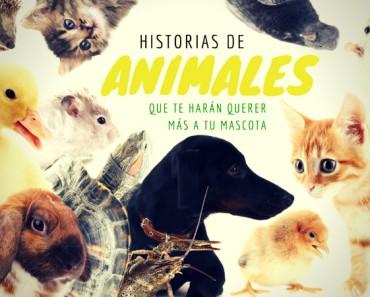 historias-animales-emotivas