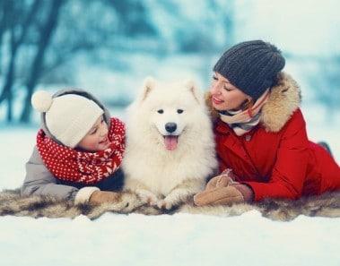 mascotas-navidad