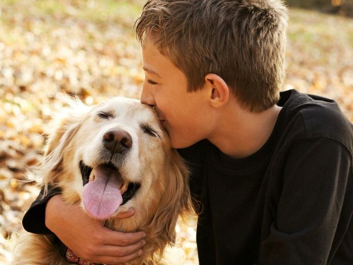 Perros mejoran autoestima autistas