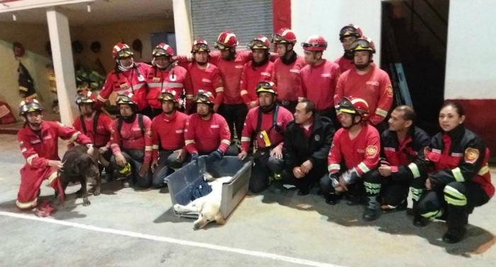 Bomberos Ecuador con Dayko fallecido