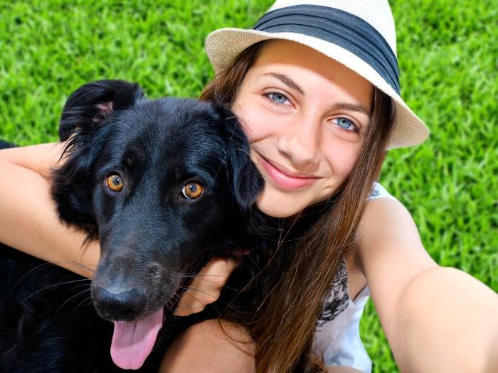 Consejos viajar mascotas