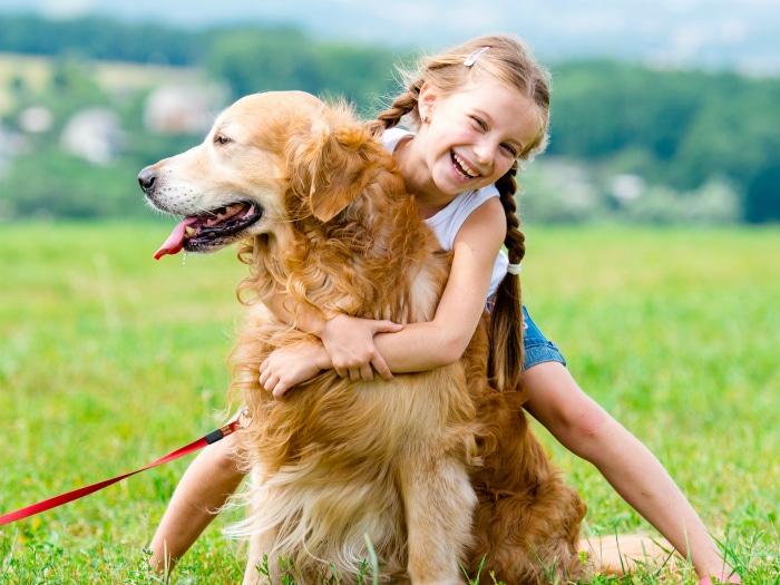 Niña con perro custodia mascotas