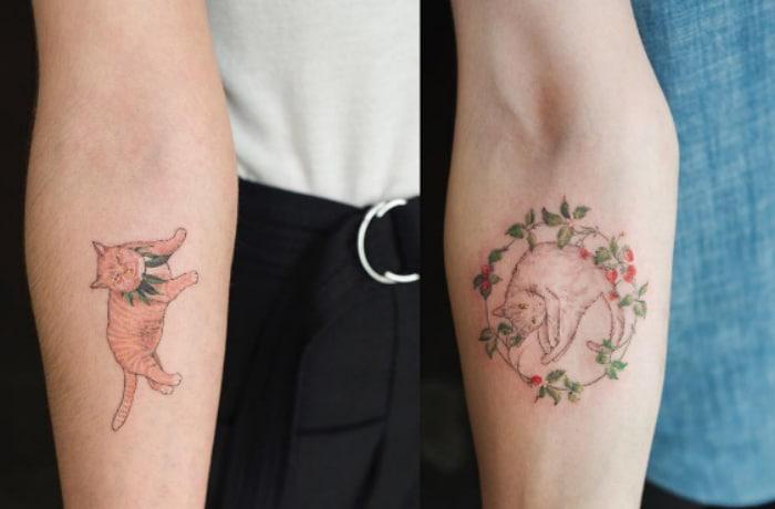 Gaticos tatus