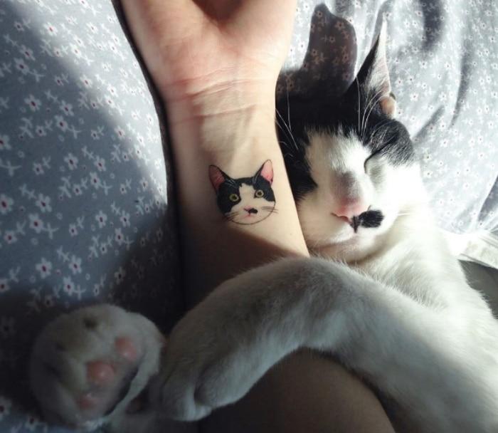 Gato tattoo
