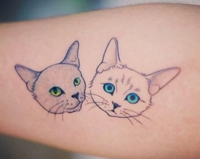 Gatos cabeza tatuaje