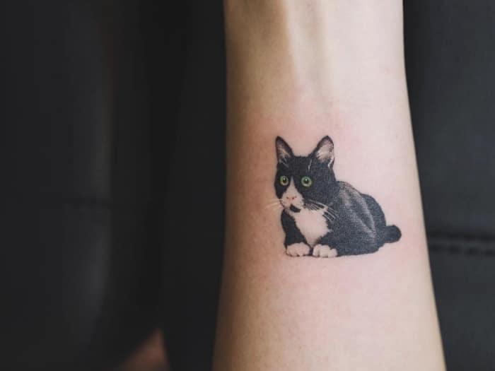 Tatuaje gatito