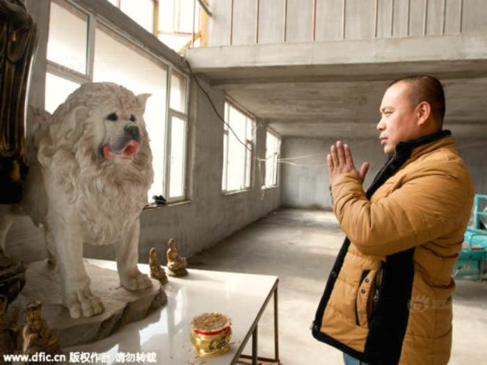 Millonario se arruina gastando su fortuna salvando perros
