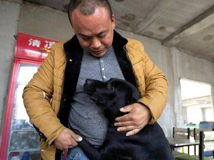 Millonario chino gasta su fortuna salvando perros
