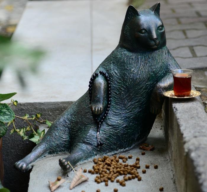 Gato famoso meme estambul sentado