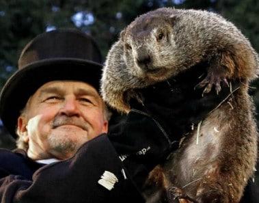 Día de la marmota 2017