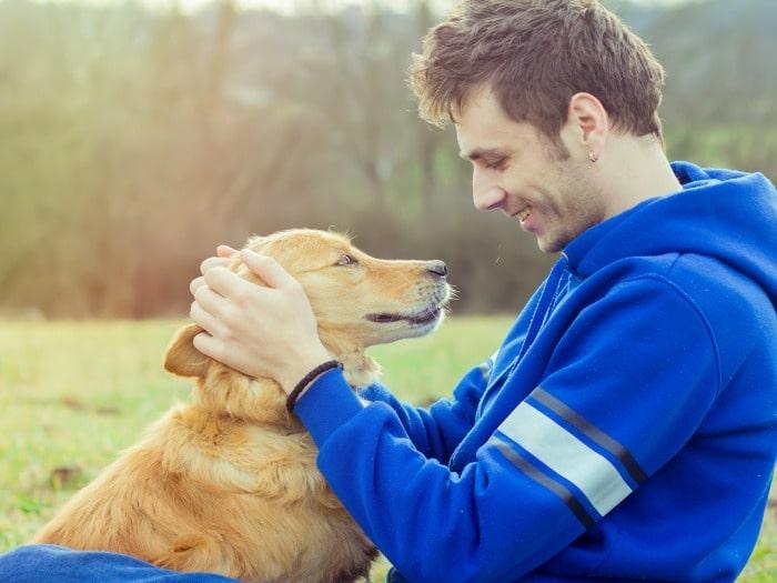 perros sienten emociones humanas
