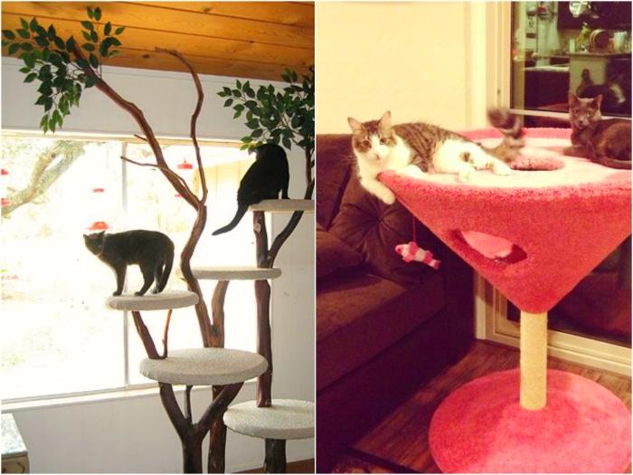 Rascadores para gatos originales y divertidos