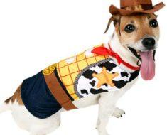 Perro disfrazado de Toy Story