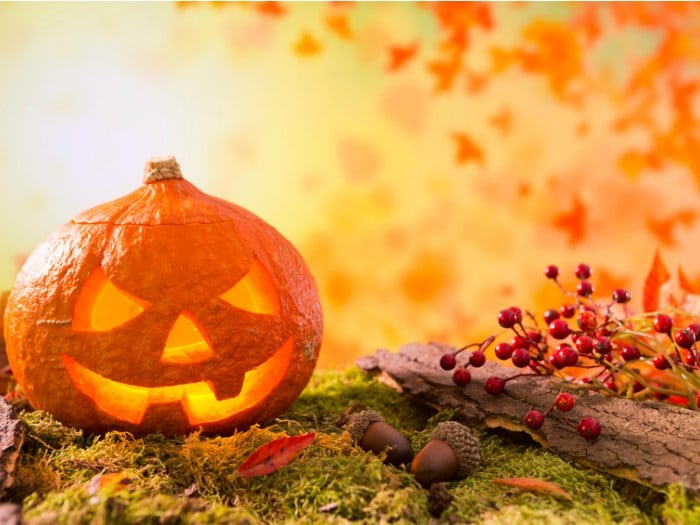 11 ideas para decorar calabazas de halloween