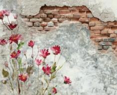 muros_mazizos_decorados