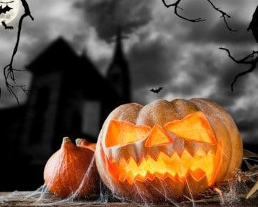 Preparar una calabaza de Halloween