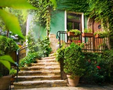 Cómo combatir la aparición de plagas en nuestro jardín